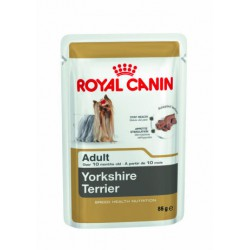 Royal Canin York Adult 12x85g